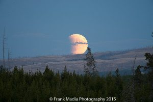 Within a few minutes the moon was nearly completely above the horizon and the eclipse was very apparent.
