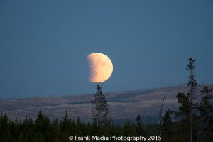As the sky continued to darken more and more details began to emerge from the moon's surface.