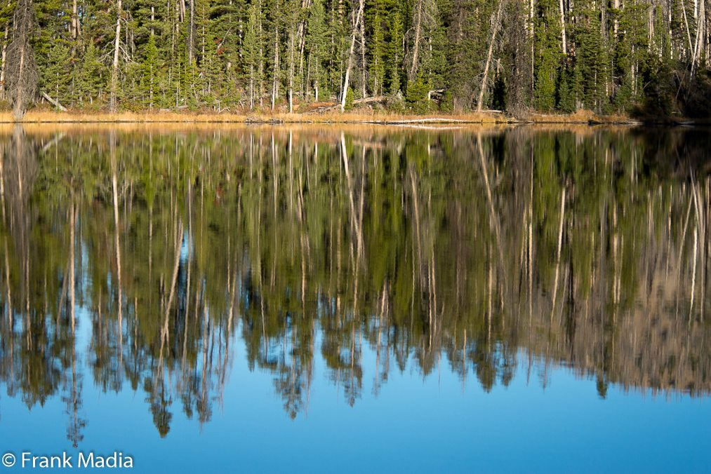 Reflections at Sylvan Lake