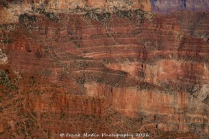 The Grand Canyon From The North Rim 3