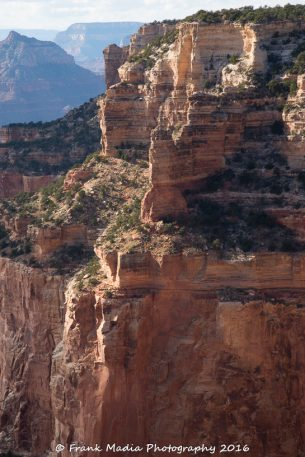 Grand Canyon – Cape Royal