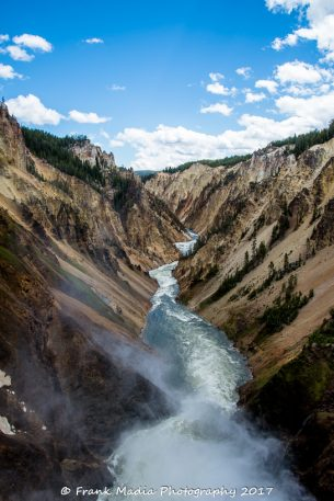 Yellowstone River Below the Lower Falls 3 Portrait