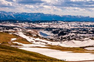 An Early Summer View From Beartooth Pass